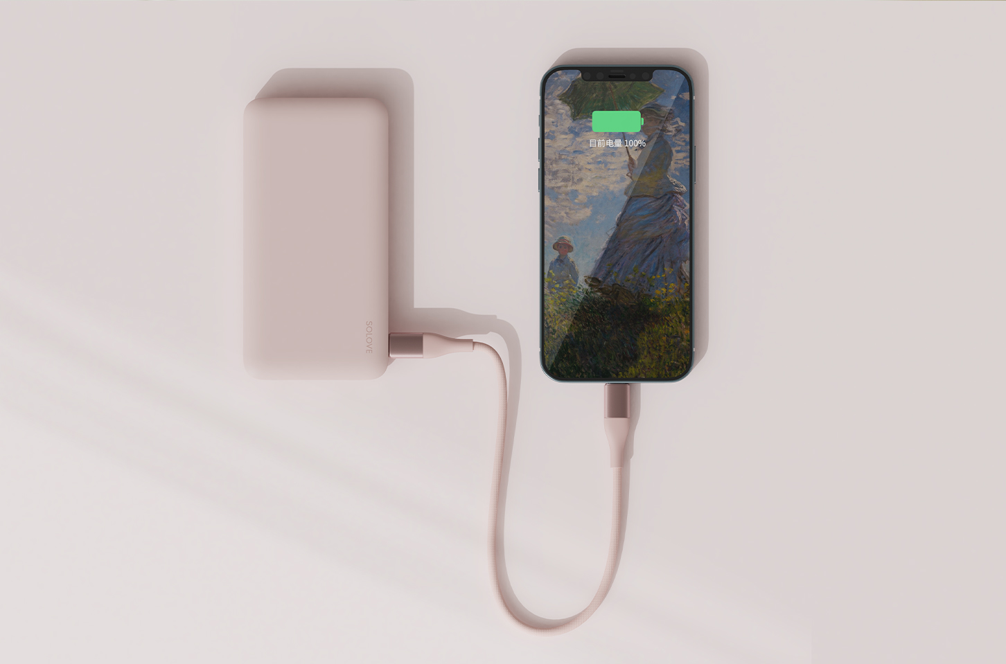 DW3/5 PD Fast Charging Cable images